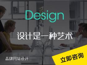 建网站网站建设品牌设计企业